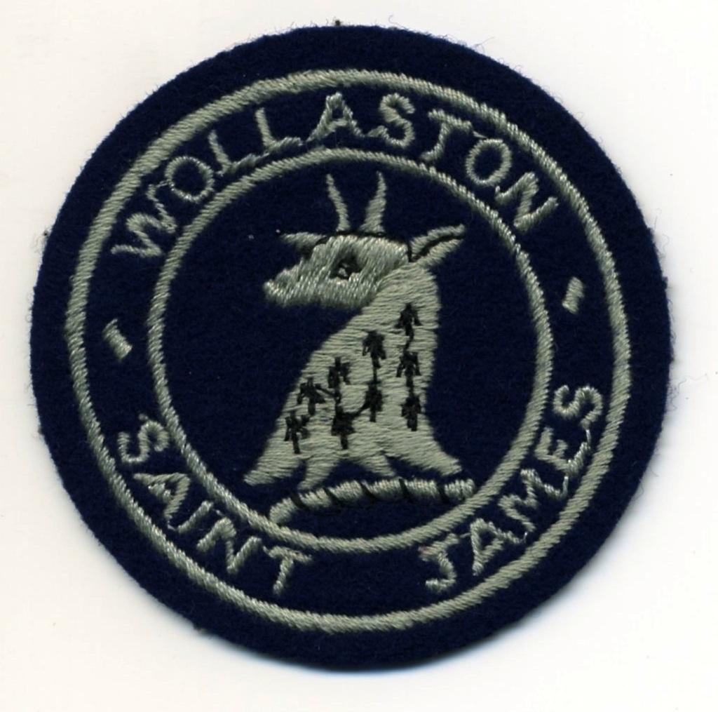 Junior School Badge